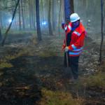 Waldbrand bei Hösseringen