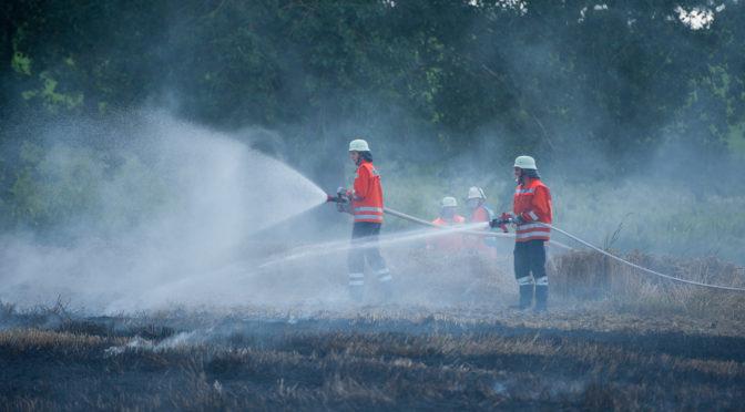 13 000 Quadratmeter Stoppelfeld brannten bei Seedorf