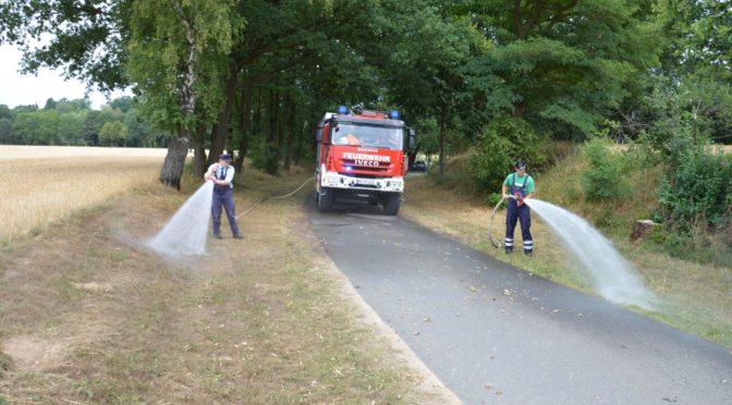 Feuerwehr schützt vor Brandgefahr beim 10. Open Air in Seedorf