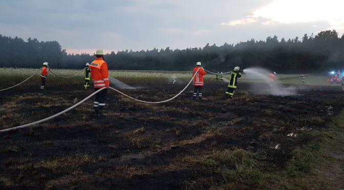 Brennt 1800m² großes Stoppelfeld bei Bienenbüttel