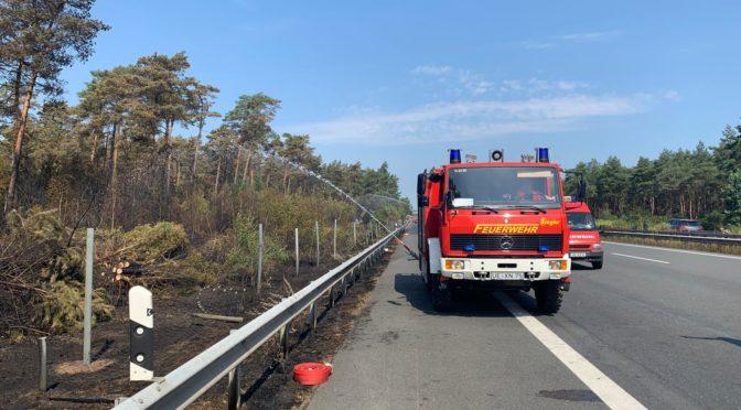 Einsatzkräfte der Kreisfeuerwehr Uelzen unterstützen Löscharbeiten im Heidekreis